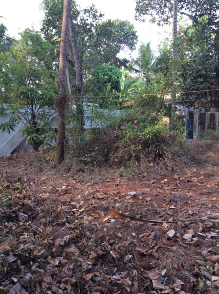 Plot for sale Edappal