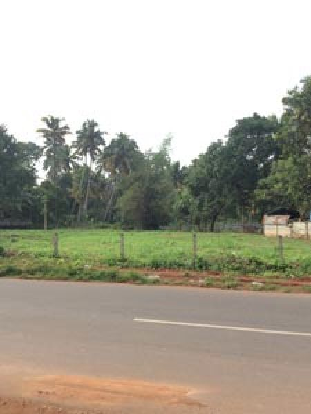 plot for sale chittilapally 5