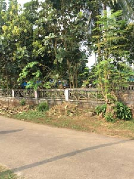 plot for sale anchery